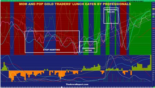 MOM AND POP GOLD TRADERS' LUNCH EATEN BY PROFESSIONALS, HOW NOT TO BECOME A VICTIM $GLD $SLV $GDX $GDXJ $DUST $NUGT